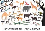 collection of exotic animals... | Shutterstock .eps vector #754755925