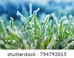 Ice Crystals On Green Grass...