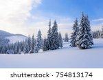 Winter Scenery In The Sunny Day....