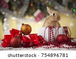 rabbit  bunny  gift boxes with... | Shutterstock . vector #754896781