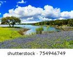 beautiful bluebonnets along a...   Shutterstock . vector #754946749
