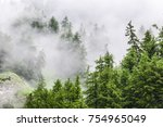nature panorama green forest... | Shutterstock . vector #754965049
