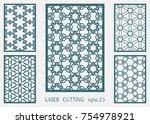 laser cut ornamental panel ... | Shutterstock .eps vector #754978921
