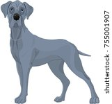 illustration of a great danes... | Shutterstock .eps vector #755001907