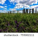 colorful landscape  pampas ...   Shutterstock . vector #755002111