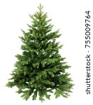 Stock photo green pine christmas tree isolated on white closeup 755009764