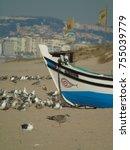 detail of a flock of seagulls... | Shutterstock . vector #755039779