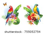 tropical summer arrangements... | Shutterstock .eps vector #755052754