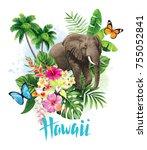 tropical summer arrangement... | Shutterstock .eps vector #755052841