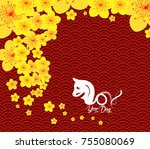 chinese new year template... | Shutterstock . vector #755080069