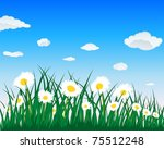 meadow background with camomiles   Shutterstock . vector #75512248