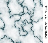 marble texture with high... | Shutterstock . vector #755248687