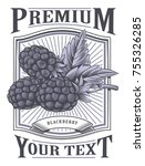 blackberry vector vintage label.... | Shutterstock .eps vector #755326285
