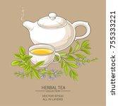 sage tea vector illustration on ... | Shutterstock .eps vector #755333221