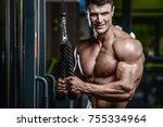 handsome muscular caucasian man ... | Shutterstock . vector #755334964
