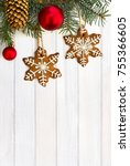 twigs of christmas tree with... | Shutterstock . vector #755366605