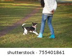 young woman trains the dog in... | Shutterstock . vector #755401861