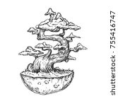 bonsai tree on piece of ground...   Shutterstock .eps vector #755416747