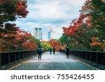 flyover  overpass at yoyogi... | Shutterstock . vector #755426455