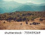 in vastness of tusheti. travel... | Shutterstock . vector #755459269