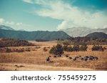 in vastness of tusheti. travel... | Shutterstock . vector #755459275