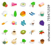 cleansing the body icons set.... | Shutterstock .eps vector #755471539