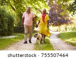 Stock photo senior couple walking with pet bulldog in countryside 755507464
