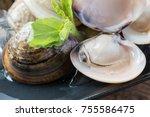 fresh enamel venus shell ... | Shutterstock . vector #755586475