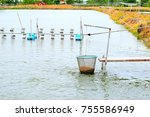 cage basket for feeding fish in ... | Shutterstock . vector #755586949