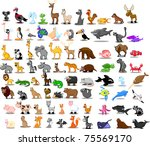 extra large set of animals...   Shutterstock .eps vector #75569170