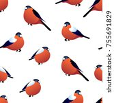seamless pattern with... | Shutterstock .eps vector #755691829
