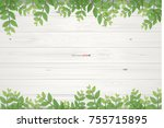 wooden planks texture and green ... | Shutterstock .eps vector #755715895