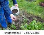 Fertilizing the garden by bio...