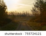 Small photo of Path to a hut in autumny forest and fog