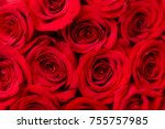 Stock photo close up of red rose blossoms for background 755757985