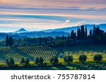 tuscany landscape with vineyard ... | Shutterstock . vector #755787814
