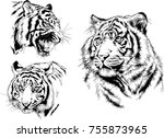 set of vector drawings on the... | Shutterstock .eps vector #755873965