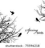 Silhouette Of Trees And Birds ...