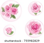 pink rose in bubbles.... | Shutterstock .eps vector #755982829