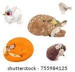 set of cute sleeping animals... | Shutterstock . vector #755984125