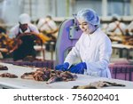 raw meat production factory... | Shutterstock . vector #756020401