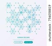 human internal organs concept... | Shutterstock .eps vector #756058819