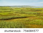 marshland in the tundra  sand ... | Shutterstock . vector #756084577