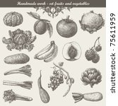handmade work   set fruits and... | Shutterstock .eps vector #75611959