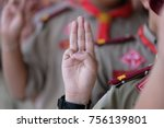 Small photo of Boy scout symbol