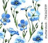 wildflower flax  pattern in a... | Shutterstock . vector #756162559