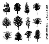 big set of hand drawn forest... | Shutterstock . vector #756185185