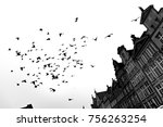 scary  a flock of birds above... | Shutterstock . vector #756263254