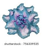 Azalea Turquoise Pink Flower ...