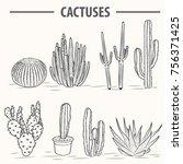 cactus vector illustrations.... | Shutterstock .eps vector #756371425
